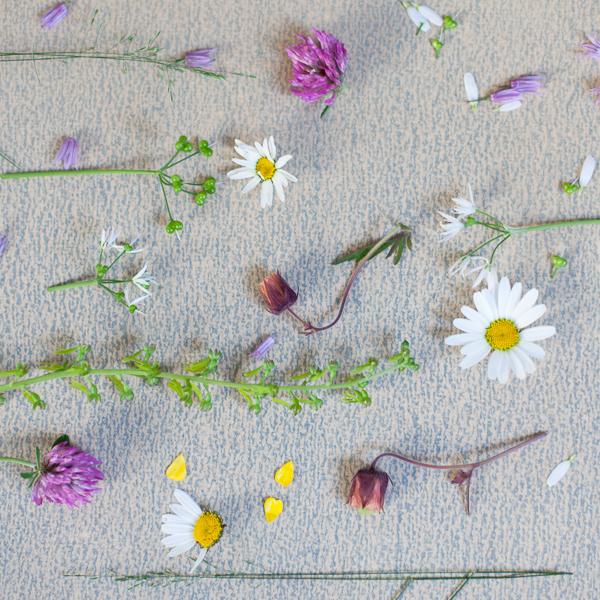 blomcollage