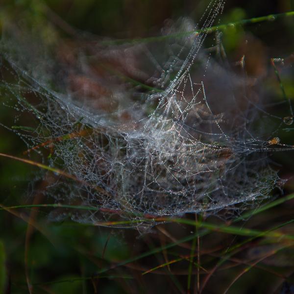 spindel vav-4