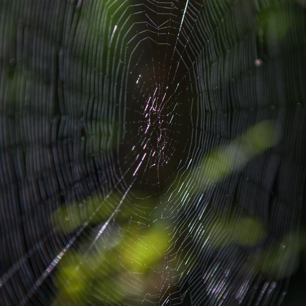 spindel vav
