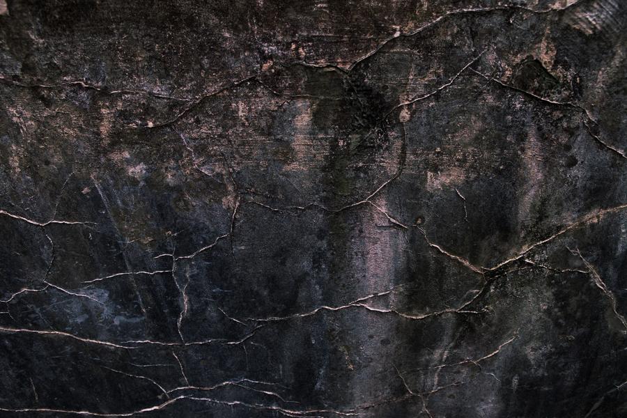 ny skog-7