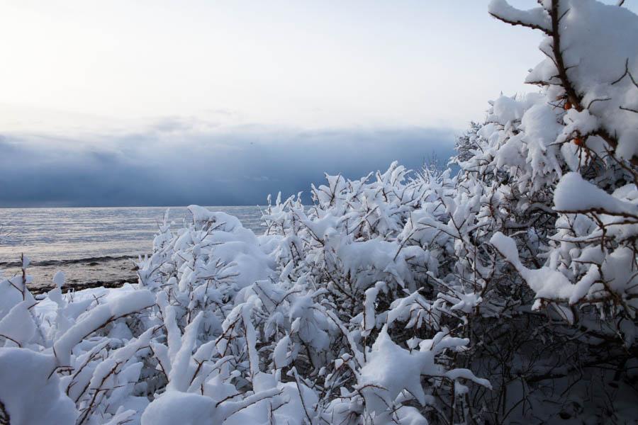 vinter aland-3