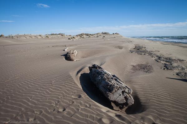 sanddyner-4