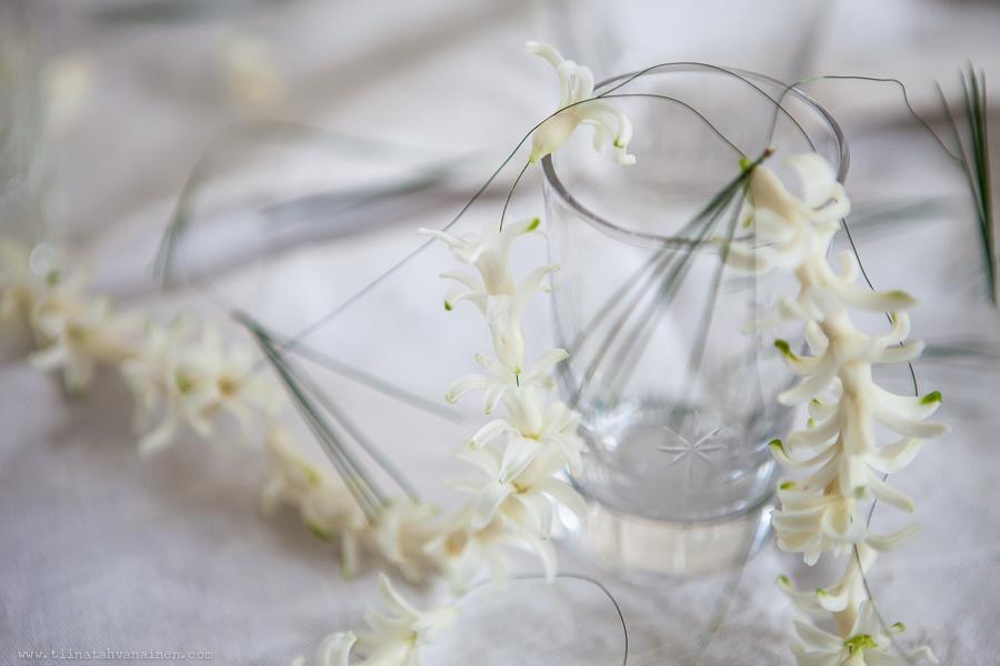 hyacinter pa trad