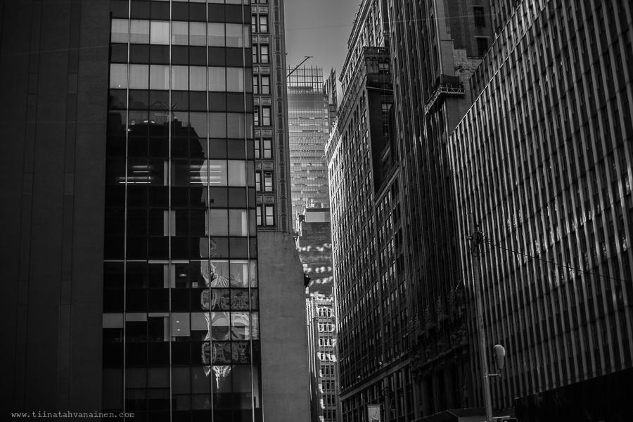 new york sv